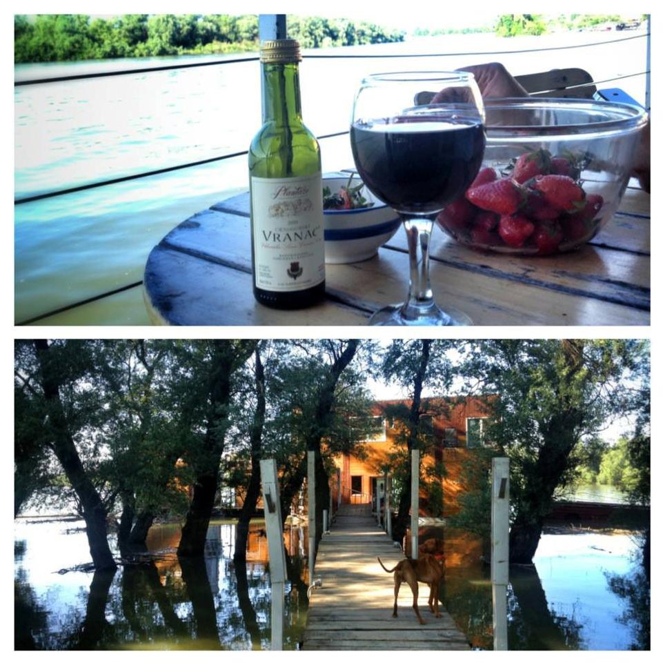 vino_prilaz